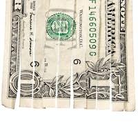 Shredded dollar bill isolated on white