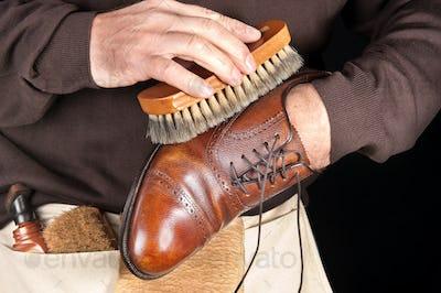 Shoe polisher