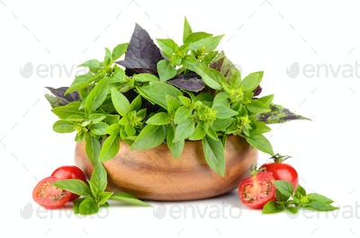 Basil leaves with cherry tomatoes