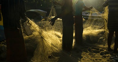 Checking the Fishing Nets at Sunrise