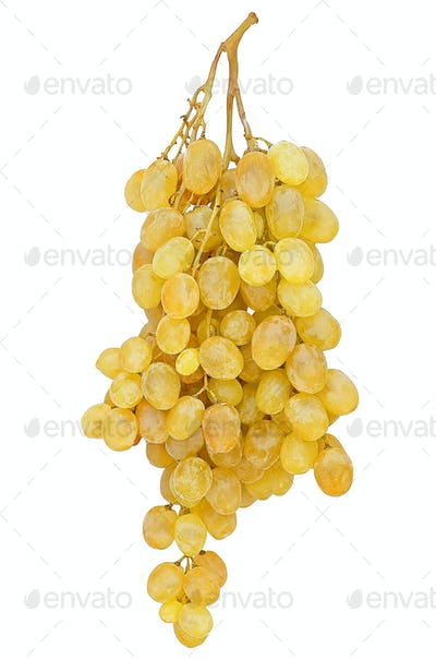 Fresh grape fruits