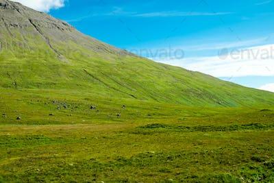 Green mountain in Scotland