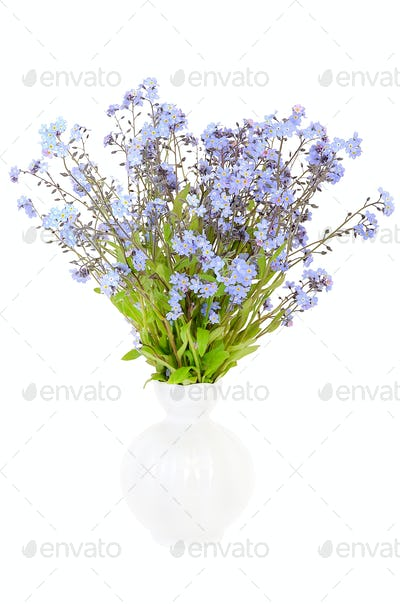 Bouquet of forget-me-not flowers