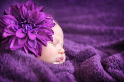 Baby fashion concept