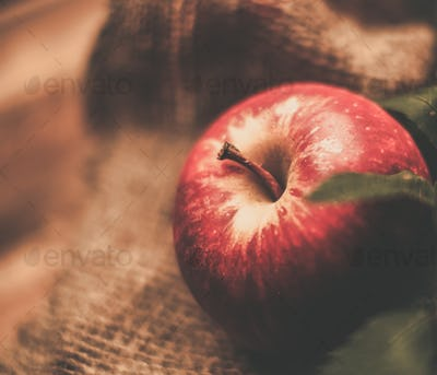 Red apple on a sack clothes