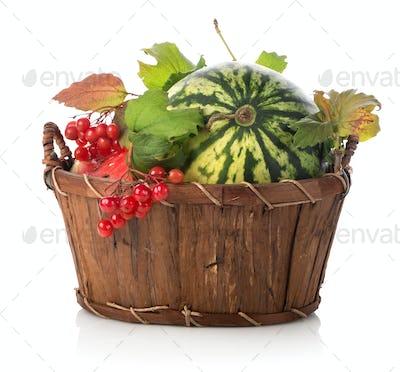 Watermelon and viburnum