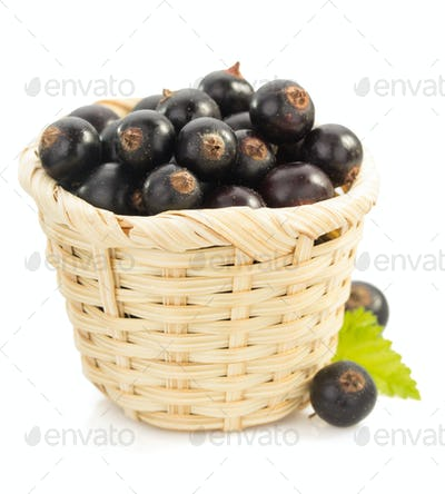 black currants on white