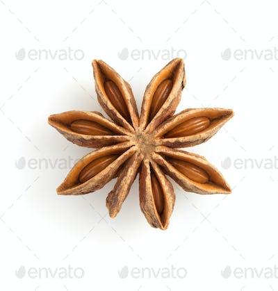 anise star on white