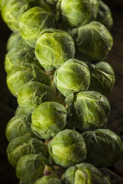 Raw Green Organic Brussel Sprouts