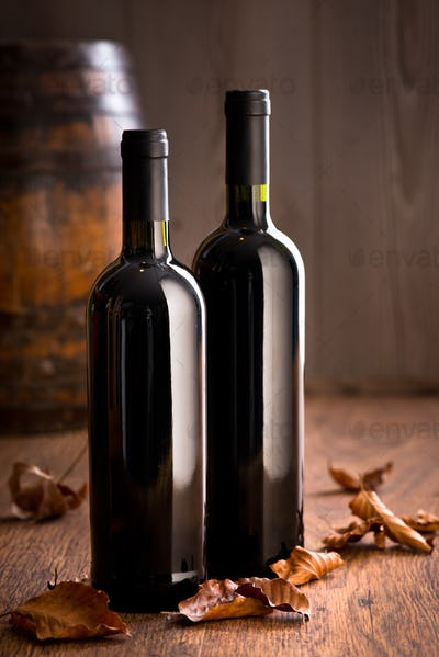Wine bottles with fallen leaves