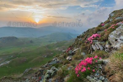The Parang Mountains, Romania