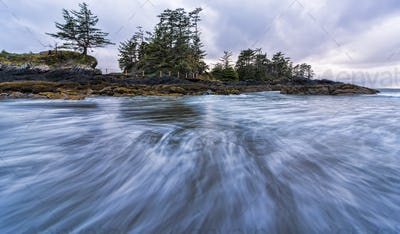 Waves in Motion and Tree Filled Island