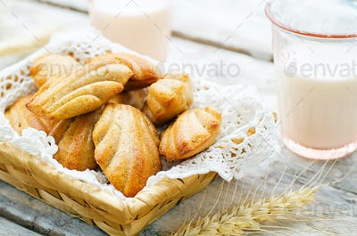 Wholegrain Madeleine on a light woody background