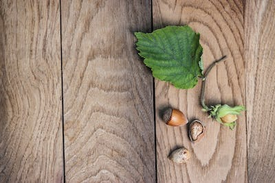 Hazelnuts On The Wooden Table