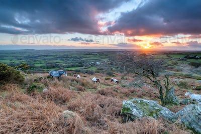 Caradon Hill on Bodmin Moor