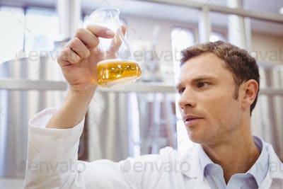 Focused scientist examining beaker with beer in the factory