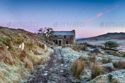 Frosty Morning on the Moor