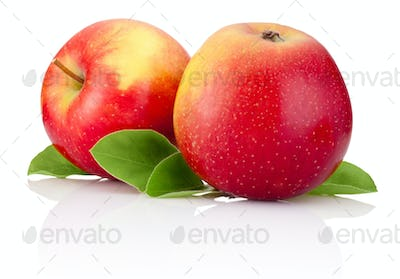 Two red apples fruits and green leaves