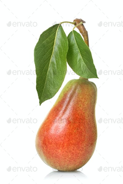 red pear with leaves isolated on white