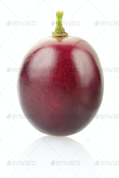 Red grape berry