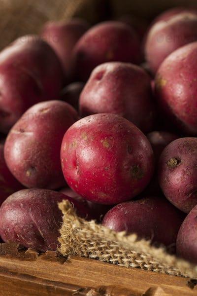 Organic Raw Red Potatoes
