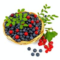 Blueberries with red currants