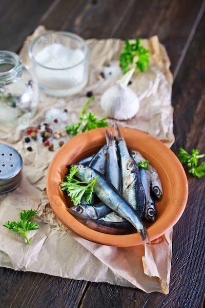 fish in bowl