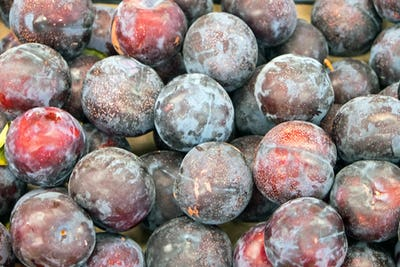 Ripe plums for sale