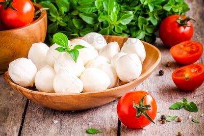mozzarella, organic cherry tomatoes and fresh basil
