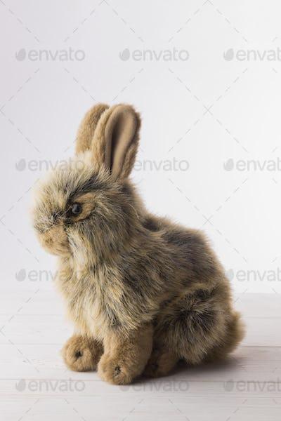 Stuffed bunny rabbit on wooden floor