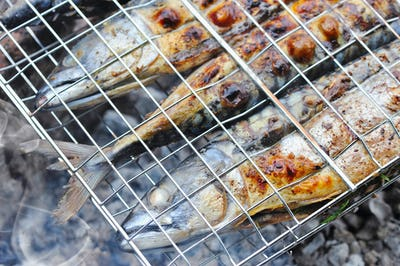 Grilled mackerels on the grill on campfire