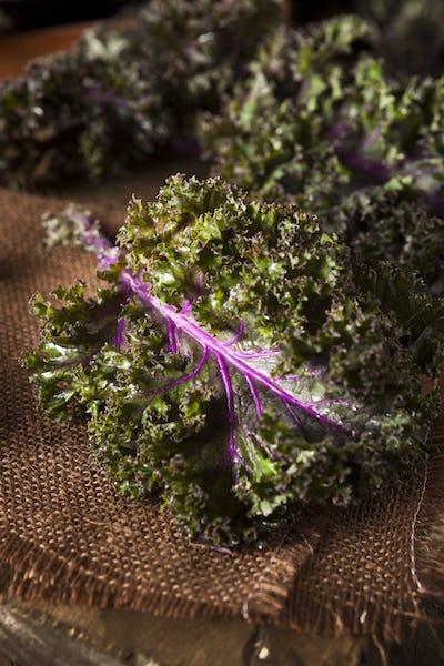 Organic Raw Red Kale