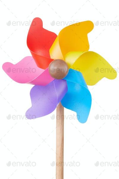 Pinwheel, colorful toy on white
