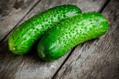 two organic cucumbers  closeup on a rustic background