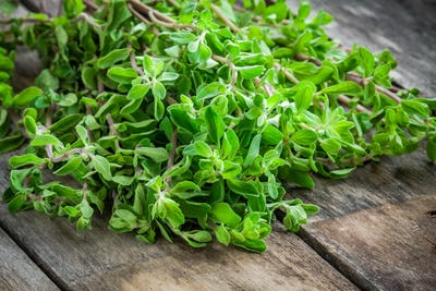 fresh raw green herb marjoram on a wooden table