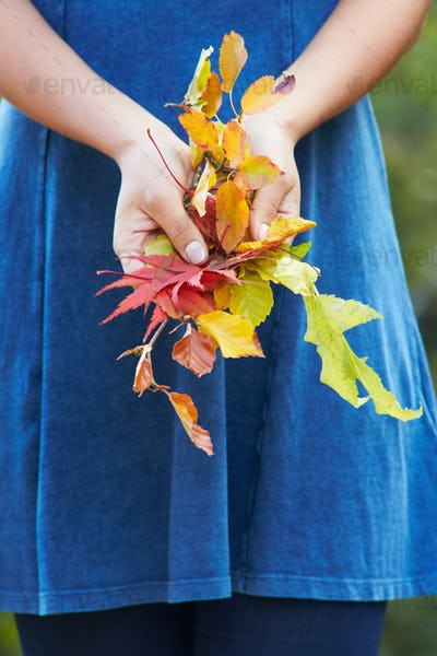 Close Up Of Woman Holding Autumn Leaves