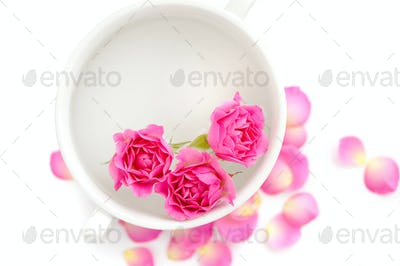 Pink roses in a cup of fragrant water on a white background