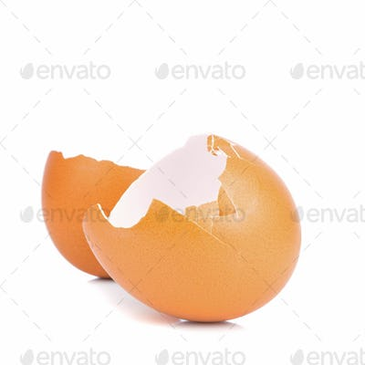 A Broken Egg Shell