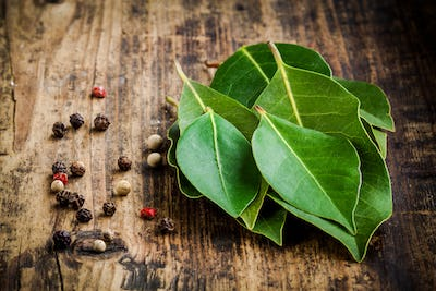 Fresh bay leaves, pepper on a wooden background