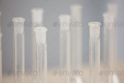 Test tubes in close up in laboratory