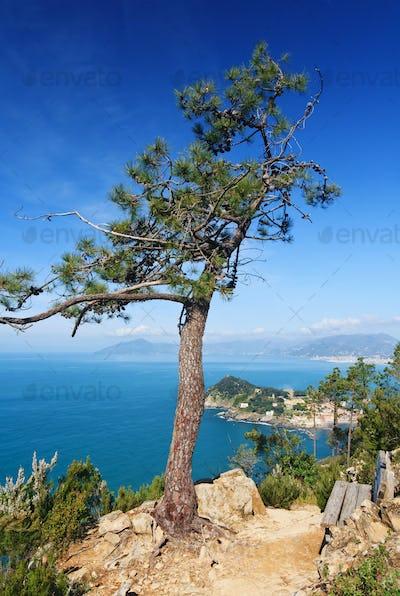Tigullio gulf, Liguria, Italy