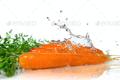 fresh water splash on carrot isolated on white