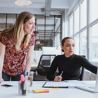 Female executives working together on new project
