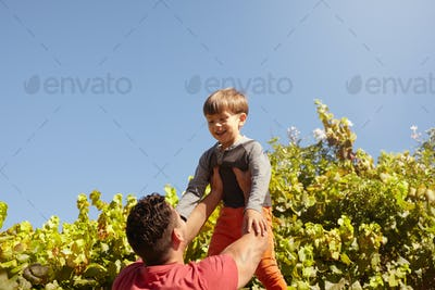 Father lifting his son high in the air