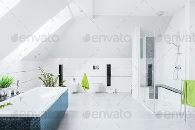 Exclusive bright bathroom