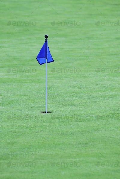 Flag on a golf green