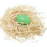 Easter Egg on Straw Nest