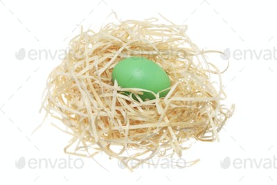Easter Egg on Straw Nest