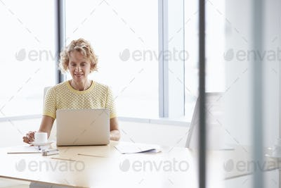 Senior Businesswoman Working On Laptop At Boardroom Table