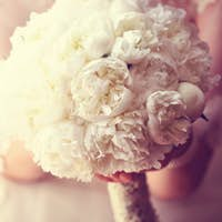 Hands of a bride holding white peonies bouquet